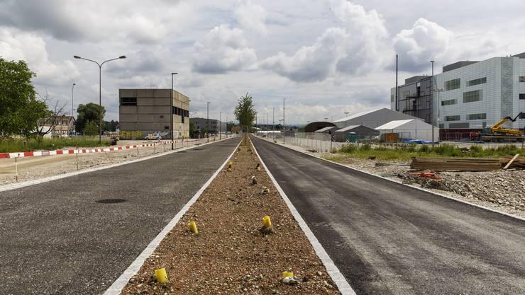 Hier die neue Verbindungsstrasse durch das neue Quartier.