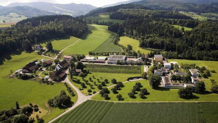 Der Gutsbetrieb auf dem Arxhof (links im Bild) gehört dem Kanton und arbeitet lose mit dem Massnahmenzentrum (r.) zusammen.