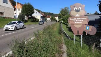 Rietheimer Landwirte dürfen das Pflanzenschutzmittel Chlorothalonil nicht mehr verwenden. Das hat der Gemeinderat entschieden.