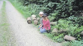 Vandalen zerstören Waldsofa