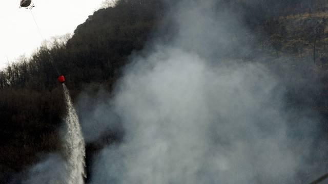 Eine weggeworfene Zigarette genügt, um einen Waldbrand auszulösen (Symbolbild)