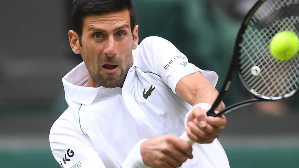 FAVORIT: Der Mann, denn es auch in Wimbledon zu schlagen gibt, bleibt aber der Titelverteidiger Novak Djokovic