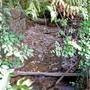 Im Juragebiet während des Sommers ein verbreitetes Bild: Praktisch ausgetrocknete Oberflächengewässer. Archiv az
