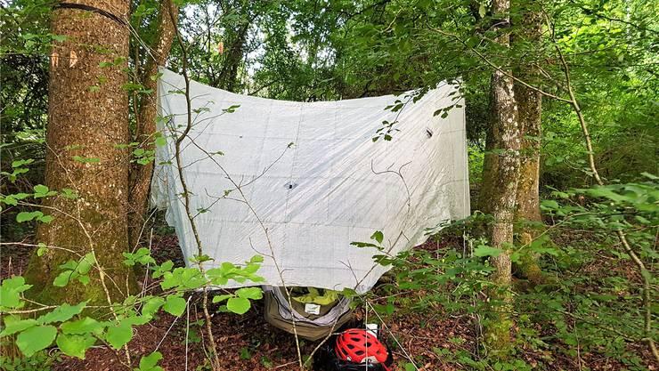 So sieht das Nachtlager von Eddy Schambron im Wald aus.