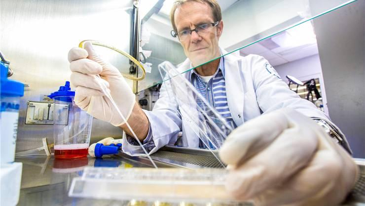 Der Stammzellen-Biologe bei der Arbeit in New York: Wird es dank seiner Therapie in Zukunft neue Hoffnungen für Parkinson-Betroffene geben?