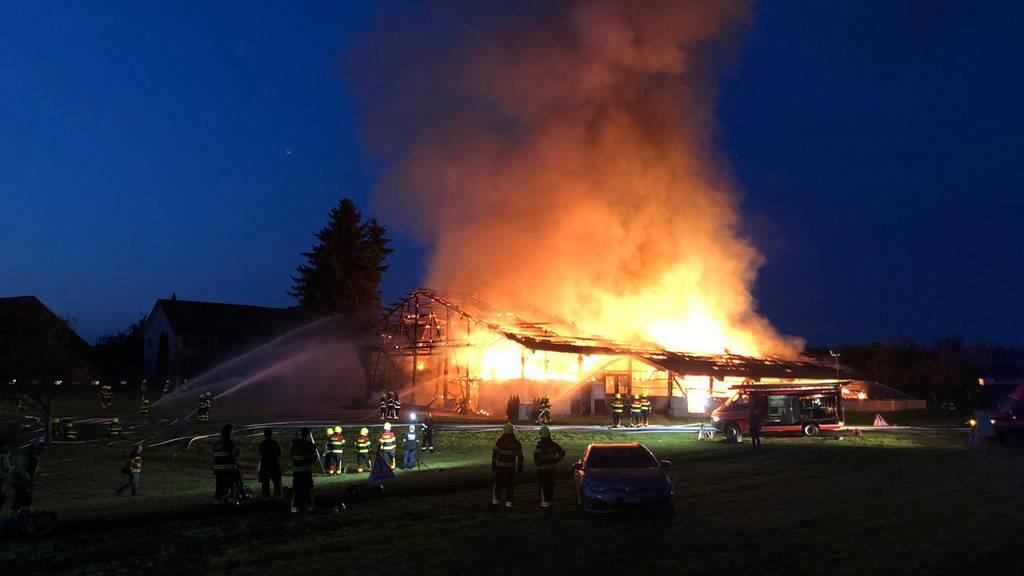 Grossbrand auf Bauernhof in Heldswil – Tiere konnten gerettet werden