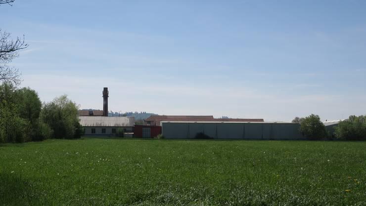 Das Areal der Karton und Papier AG in Muhen.