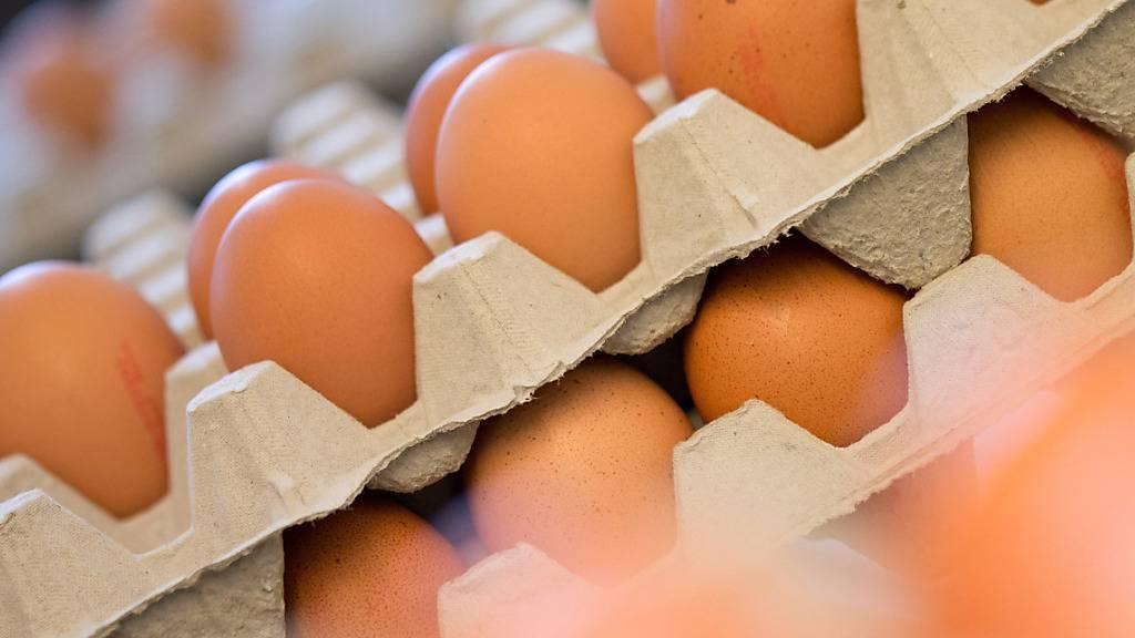 Die Schweizer Bevölkerung hat 2020 so viele Eier gegessen wie seit über 20 Jahren nicht mehr. (Symbolbild)