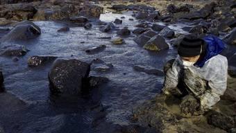 Ein freiwilliger Helfer säubert den den ölverschmutzen Strand von Muxia in Nordspanien im November 2002 (Archiv)