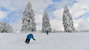 Skispass Grenchenberg