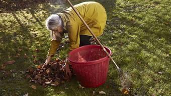 Unbehandeltes Holz aus Garten und Landwirtschaft darf neu im eigenen Ofen oder Cheminée verbrannt werden. (Symbolbild)