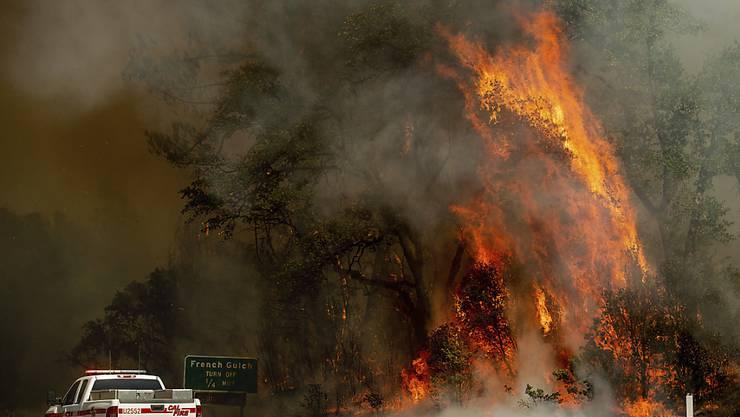 """""""Wand aus Flammen"""": Bei den jüngsten Busch- und Waldbrände in Kalifornien kamen zwei Menschen ums Leben."""