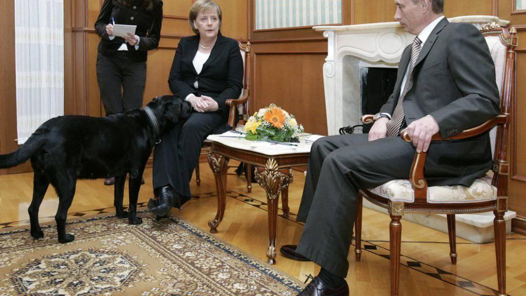 Obwohl Wladimir Putin wusste, dass Angela Merkel unwohl ist in der Nähe von Hunden, hat er sie 2007 zusammen mit seinen Kläffer empfangen (Archiv).