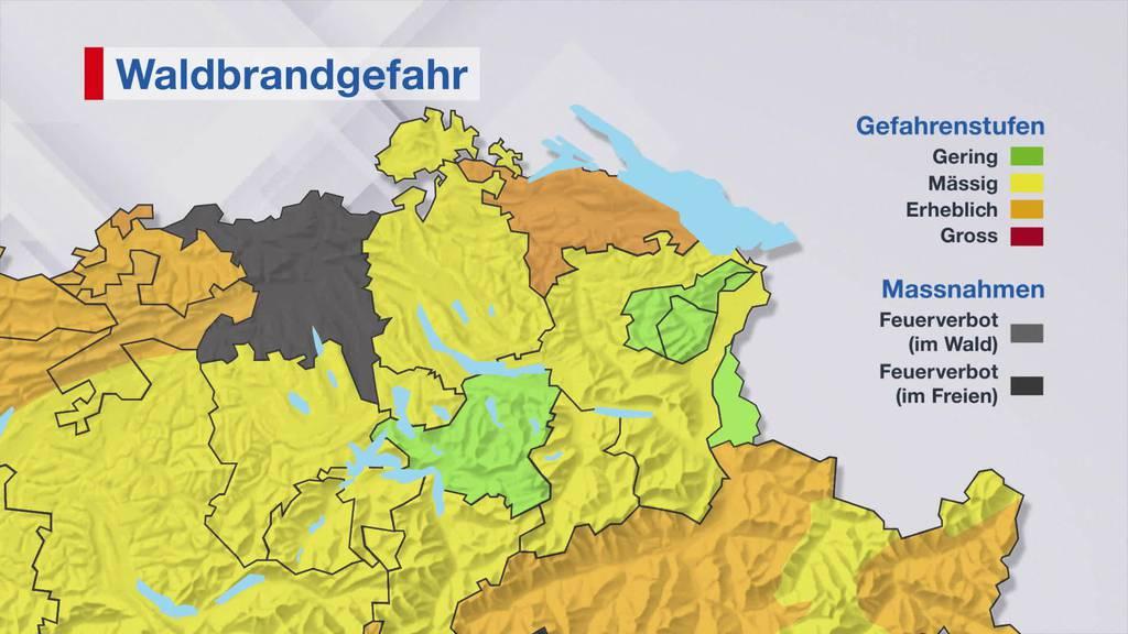 Grosse Waldbrandgefahr: Kanton Thurgau mahnt zur Vorsicht