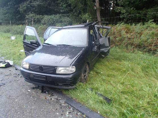 Im Auto auf dem Pannenstreifen befanden sich eine 26-jährige Mutter mit ihrem 9-jährigen Sohn und ihrer 8-jährigen Tochter. Die Tochter wurde schwer, die Mutter und der Sohn leicht verletzt.