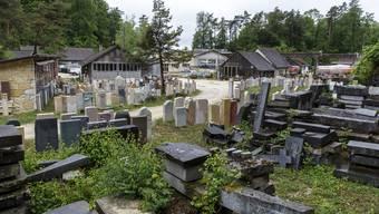 Im früheren Steinbruch im Wald zwischen Solothurn und Rüttenen haben verschiedene Nutzungen Platz.