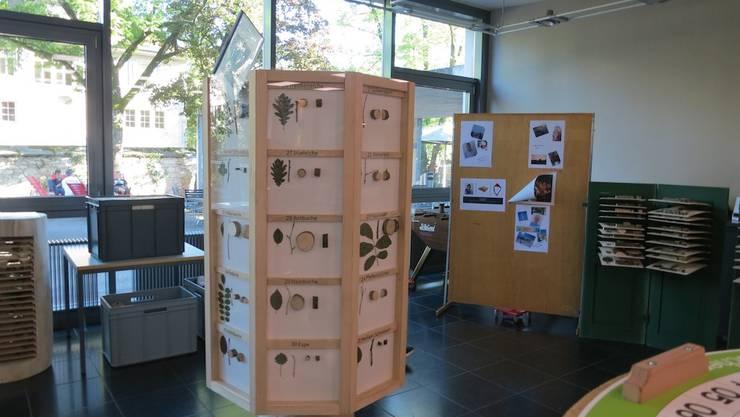 Forstherbar: Eine Sammlung von Gehölzpflanzen aus der dritten Forstwartklasse  2019