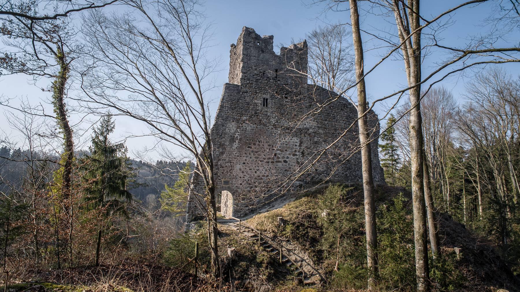 Die 16-Jährige stürzte in der Nähe der Burgruine Ramschwag. (Archiv)