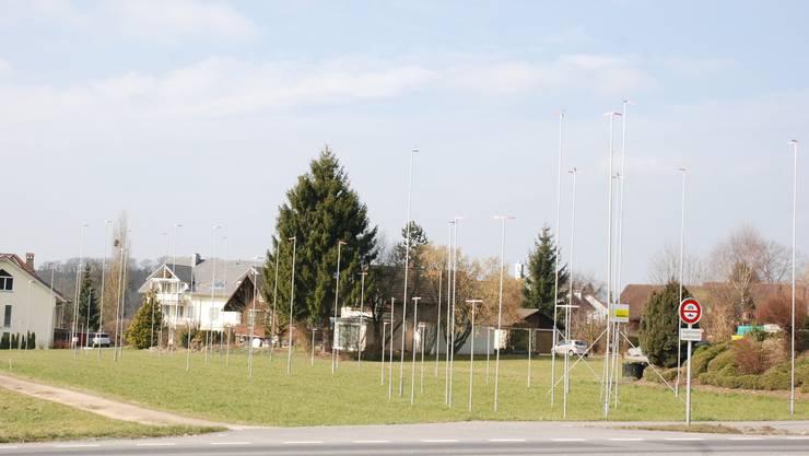 Baugesuchsverfahren läuft: Einfamilienhäuser und Doppeleinfamilienhaus an der Dottikerstrasse.