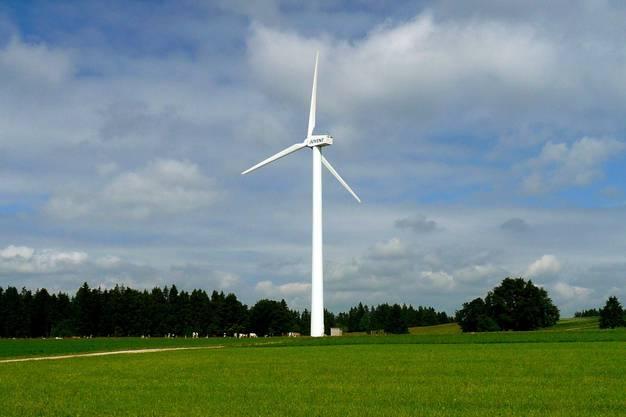 Die Windkraft-Initianten haben schon 2000 Unterschriften beisammen.