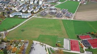 Stein hofft, dass die Mittelschule Fricktal im Dorf landet. Das würde dem Dorf ein weiteres Wachstum garantieren. Bereits im letzten Jahr wuchs die Gemeinde mit einem Plus von 107 Einwohnern im Fricktal am stärksten.