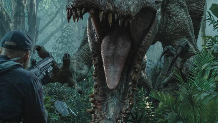 """Das Kinospektakel """"Jurassic World"""" - hier ein Ausschnitt aus Teil 1 - geht bald weiter. Universal Pictures hat im Netz einen ersten Trailer zur Fortsetzung """"Fallen Kingdom"""" veröffentlicht. (Archivbild)"""