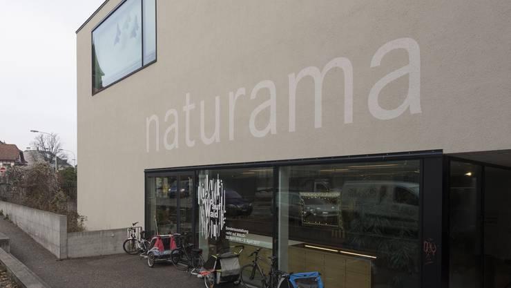 Das Naturama plant für den Sommer 2018 die Rückkehr einer «alten Bekannten» – Details sind noch geheim.
