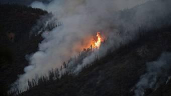 In Kalifornien wüten drei Waldbrände und zerstören zehntausende Hektar Wald - wie hier die Flammen des Ferguson Feuers in der nähe des Yosemite Nationalparks.