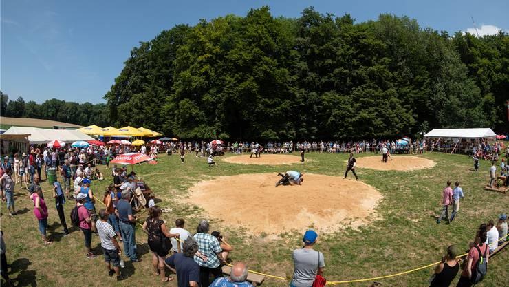 2018 fand das Schwingfest noch auf dem Engelberg statt. Aufgrund der wachsenden Zuschauerzahlen musste ein neuer Standort gesucht werden.Patrick Lüthy/Archiv