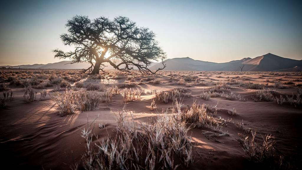 Relax - Namibia