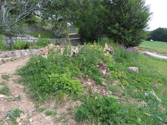 Der Juragarten befindet sich direkt unter dem Kurhaus