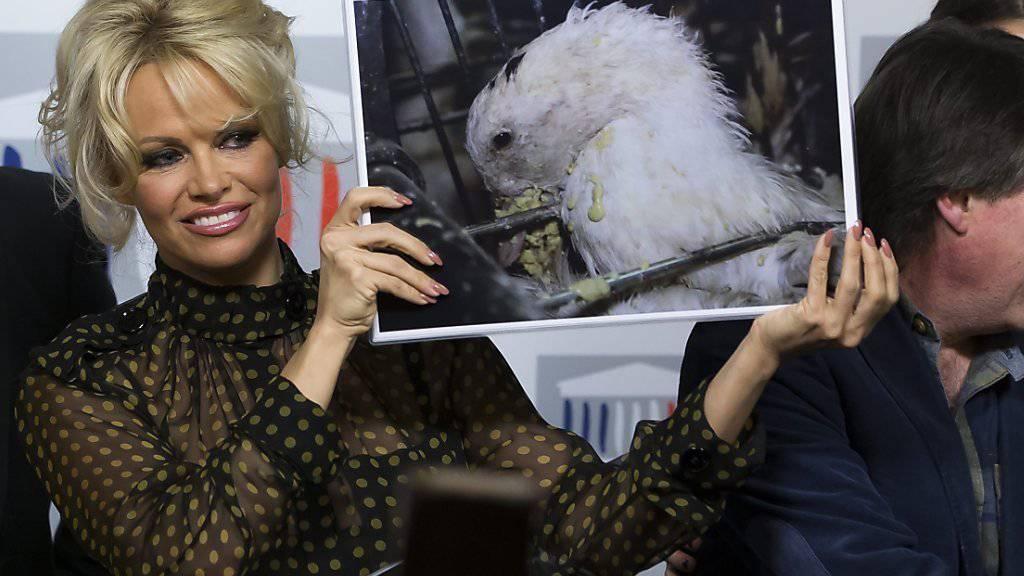Hält den Franzosen den Spiegel vor: «Bawatch»-Star Pamela Anderson kämpft im Parlament in Paris gegen Stopflebern.