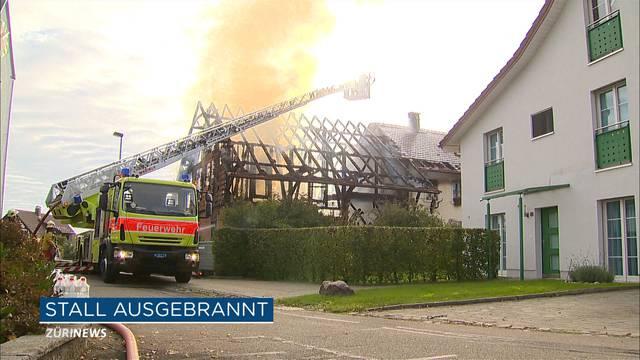 Buech am Irchel: Stall fängt Feuer