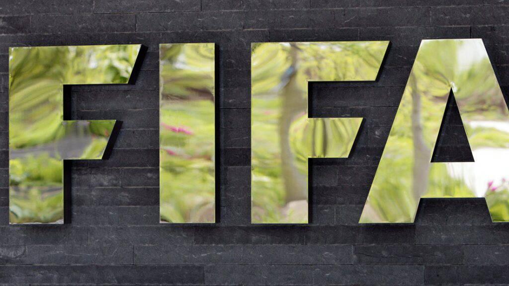 Gemäss einer Umfrage der FIFA stehen viele Fans einer Fussball-WM alle zwei Jahre grundsätzlich positiv gegenüber