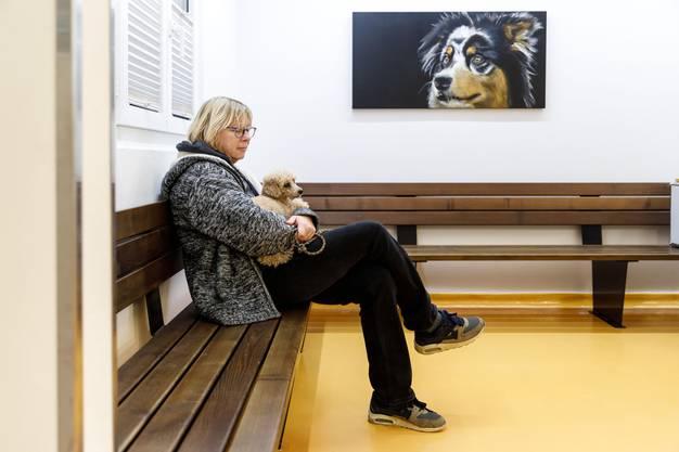 Im Wartezimmer warten, bis der Hund an die Reihe kommt