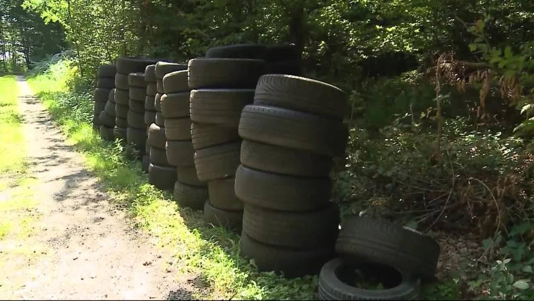 Schon wieder: Über 70 Pneus im Wald entsorgt