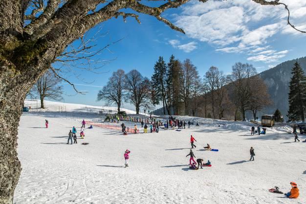 Das ideale Wetter für Spass im Schnee
