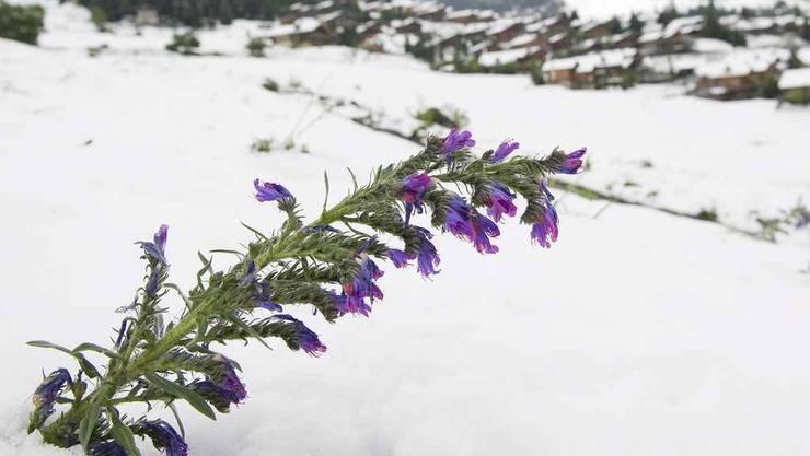 Wintereinbruch in Verbier