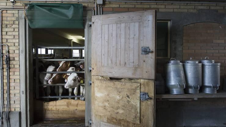 In den nächsten zehn Jahren könnten 19 Prozent der Betriebe im Kanton verschwinden, schätzt der Bauernverband.