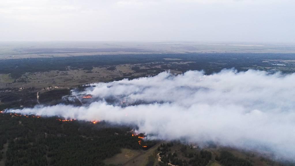 Ein Waldbrand mit einer Fläche von 200 Hektar im Bezirk Danilovka.
