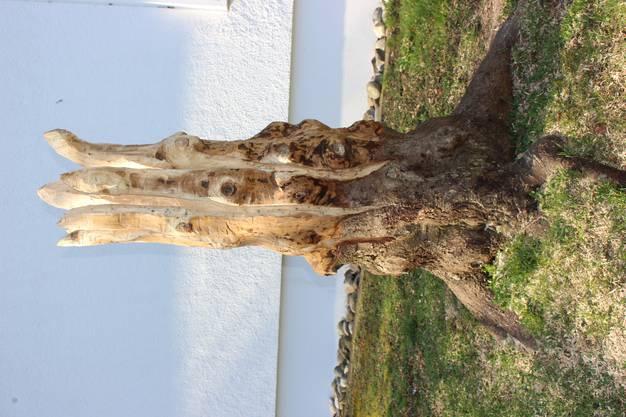 ie Holzskulptur vor der Kirche ist aus einem Baumstumpf entstanden.