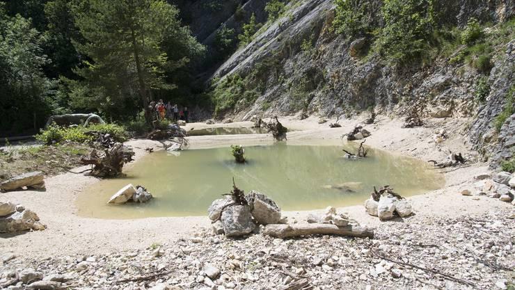 Das neu erstellte Amphibienbiotop im Steinbruch in Lommiswil.