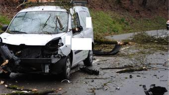 Wegen des Sturms stürzte ein Baum auf die Strasse, als der Lieferwagen vorbeifuhr.