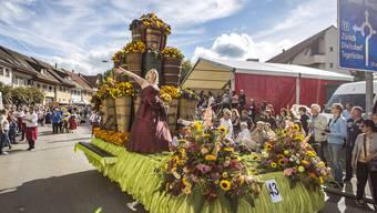 Das Winzerfest in Döttingen erreicht mit dem Umzug am Sonntag den Höhepunkt des dreitägigen Anlasses.
