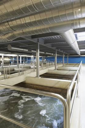 Becken für biologische Reinigung in der neuen ARA