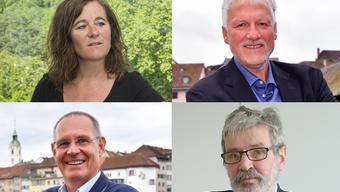 Ständeratswahlen 2019: Das sagen die Solothurner Poitiker