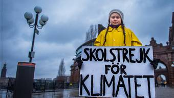 Gegen den Klimawandel: Greta Thunberg vor dem schwedischen Parlament in Stockholm am 30. November.