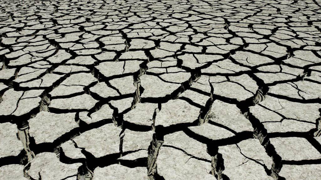 Extreme Regenfälle und lange Dürren: Der Klimawandel bringt Wetterextreme mit sich. Unter diesen leiden vor allem die ärmsten Länder (Symbolbild).