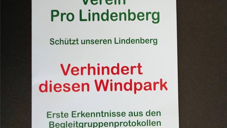 Das ist der neuste Flyer des Vereins Pro Lindenberg. ES