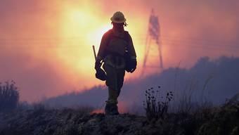 Die Feuerwehrleute sind im Dauereinsatz: Die Buschbrände in Kalifornien vertrieben bisher mehr als 80'000 Menschen aus ihren Häusern.